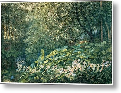 Under The Dock Leaves Metal Print by Richard Doyle