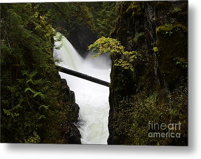 Upper Qualicum Falls Metal Print by Bob Christopher
