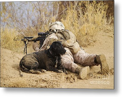 U.s. Marine And A Military Working Dog Metal Print by Stocktrek Images