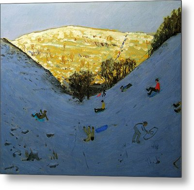 Valley And Sunlit Hillside Metal Print by Andrew Macara