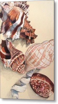 Vertical Conch Shells Metal Print by Glenda Zuckerman