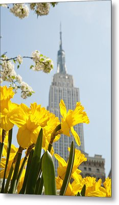 Views Of The Empire State Building And Metal Print by Axiom Photographic