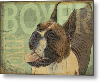 Vintage Boxer Dog Metal Print by Wendy Presseisen