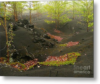 Volcanic Scenery Metal Print by Bernard MICHEL