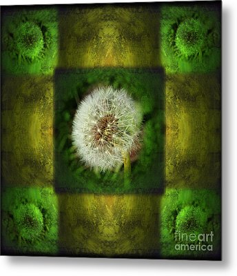 Waiting For A Wish Metal Print by Laura Iverson
