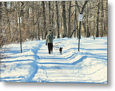 Walking The Dog Metal Print by Paul Ward