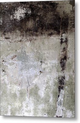Wall Texture Number 11 Metal Print by Carol Leigh
