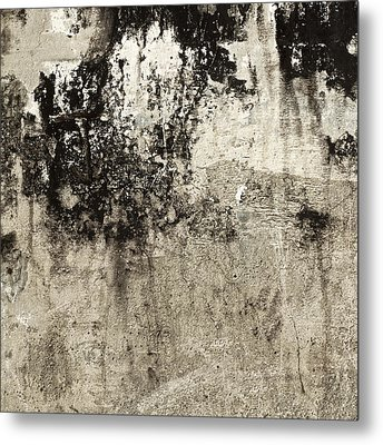 Wall Texture Number 9 Metal Print by Carol Leigh