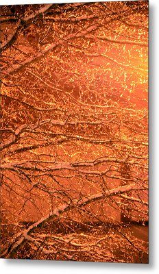 Warm Icy Reflections Metal Print by Sandi OReilly