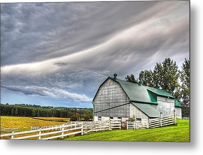 Weather It Out Metal Print by Bruce Kenny
