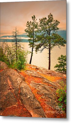 Welcoming The Morning Metal Print by Tara Turner
