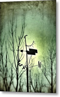 Where The Wind Takes Me... Metal Print by Marianna Mills