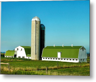 White And Green Barns Metal Print by Steven Ainsworth