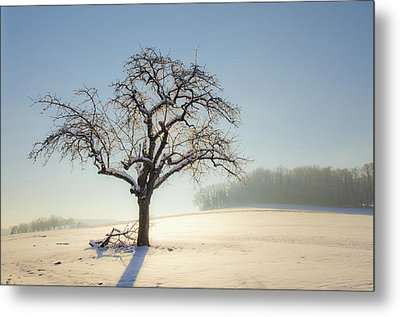 White Calm Metal Print by Arnaud Boukalala
