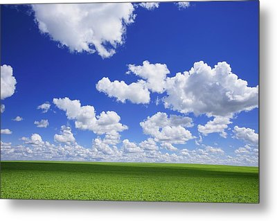 White Clouds In The Sky And Green Meadow Metal Print by Don Hammond