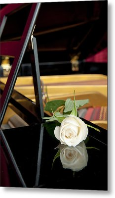 White Rose And Its Reflection Metal Print by Corepics