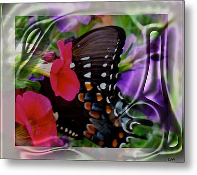 Wild Wings Butterfly Metal Print by Debra     Vatalaro