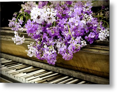 Wildflower Music Metal Print by Kathy Jennings