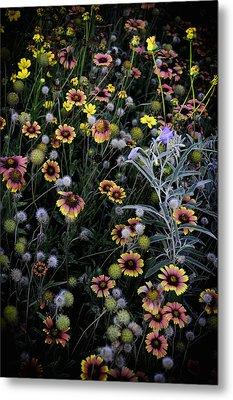 Wildflowers 5 Metal Print by Mauricio Jimenez
