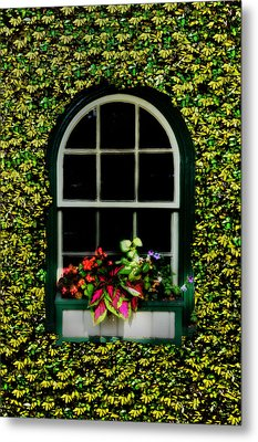 Window On An Ivy Covered Wall Metal Print by Bill Cannon