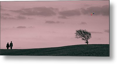 Windswept Metal Print by Justin Albrecht