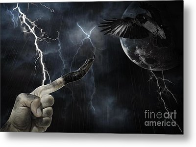 Winner Takes All Metal Print by Joanne Kocwin
