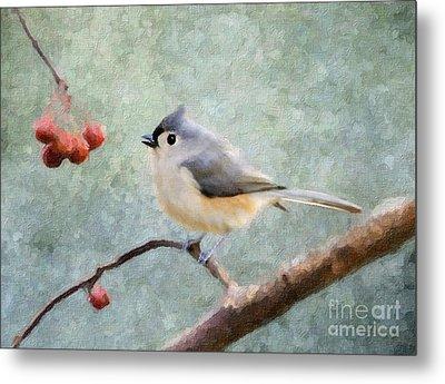 Winter Berries Metal Print by Betty LaRue