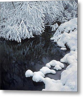Winter Brook Metal Print by Elena Filatova