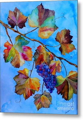 Winter Grapes Metal Print by Fred Meehan