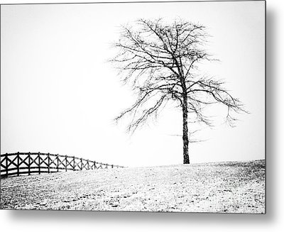 Winter In Black And White Metal Print by David Waldrop