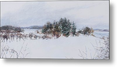 Winter In Ipswich Ma Metal Print by Sandy Spring