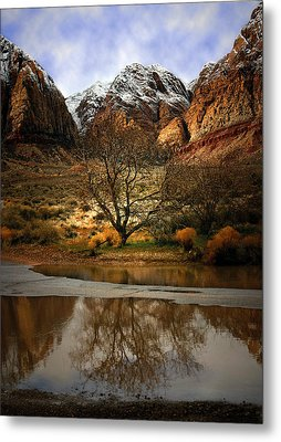 Winter Reflections Metal Print by Nabila Khanam