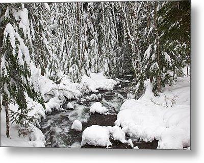 Winter Snow Along Still Creek In Mt Metal Print by Craig Tuttle