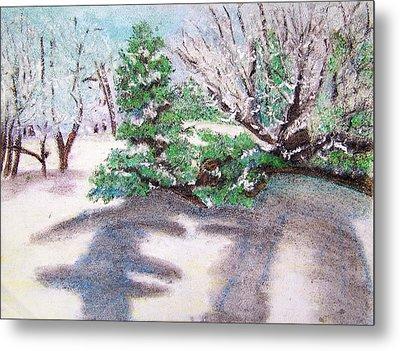 Winter Trees Metal Print by Katina Cote