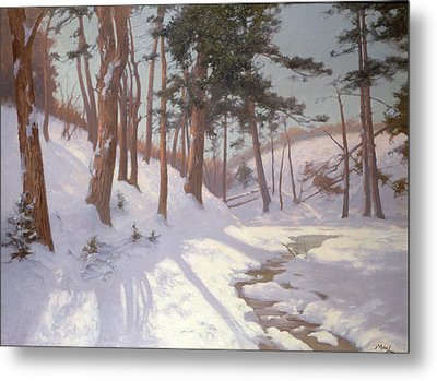Winter Woodland With A Stream Metal Print by James MacLaren
