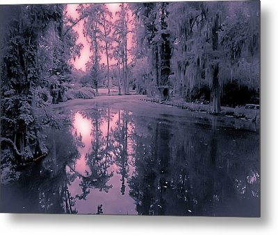 Winterland In The Swamp Metal Print by DigiArt Diaries by Vicky B Fuller