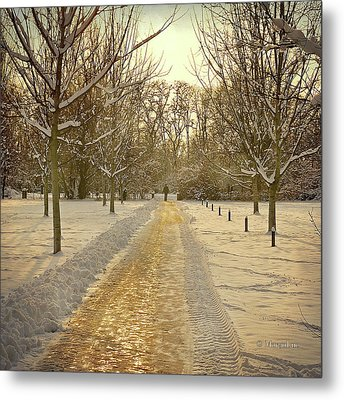 Wintry Golden Light At Sunset Metal Print by by MargoLuc