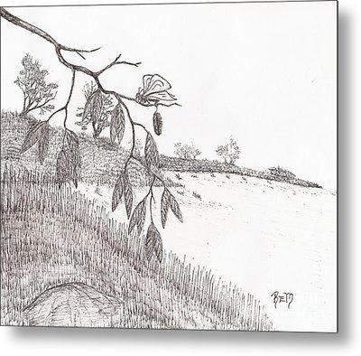With New Wings... - Sketch Metal Print by Robert Meszaros
