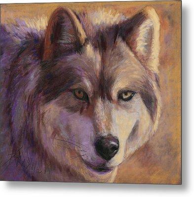 Wolf Study Metal Print by Billie Colson