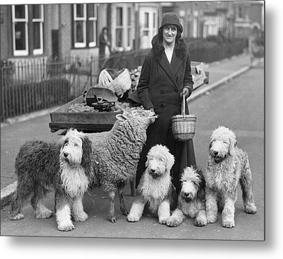 Woman And Pets Metal Print by Fox Photos