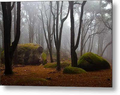 Wonderland Metal Print by Jorge Maia