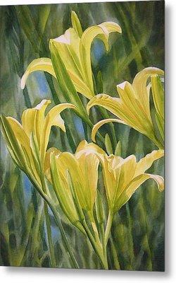 Yellow Lilies Metal Print by Sharon Freeman
