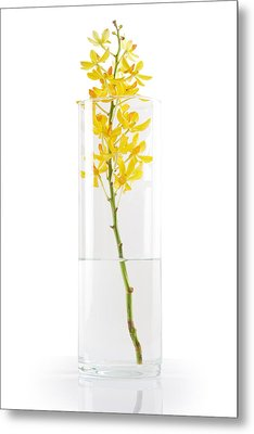 Yellow Orchid In Vase Metal Print by Atiketta Sangasaeng