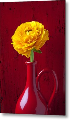 Yellow Ranunculus In Red Pitcher Metal Print by Garry Gay