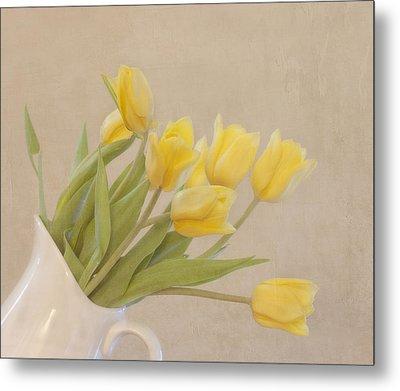 Yellow Tulips Metal Print by Kim Hojnacki