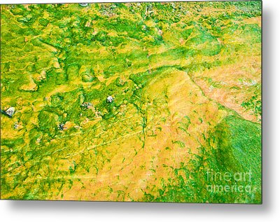 Yellowstone Abstract 1 Metal Print by Bob and Nancy Kendrick