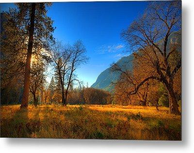 Yosemite National Park Metal Print by Eyal Nahmias