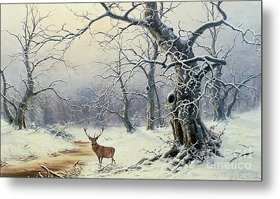 A Stag In A Wooded Landscape  Metal Print by Nils Hans Christiansen