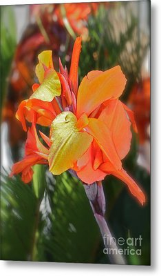 Orange Bright Metal Print by Maureen J Haldeman