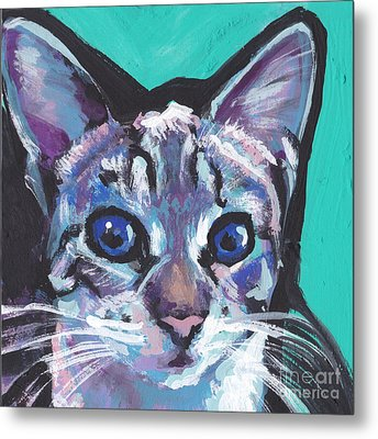 Pritty Kitty  Metal Print by Lea S
